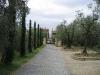 pavaj-sasso-italia-10